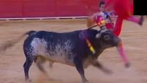 西班牙斗牛士被顶惨死场上 愤怒的公牛被残忍处死